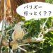 バリ島動物園【バリズー(Bali Zoo)】がリニューアル♪家族旅行に是非!!
